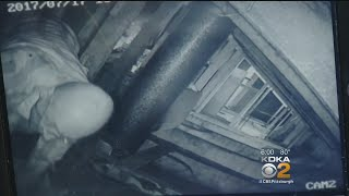 Download Caught On Camera: Man Sneaks Into Neighbor's Attic Video