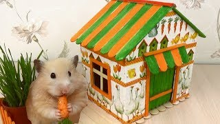 Download How to Make Village House for Hamster - Popsicle Sticks & Cardboard & Decoupage Video