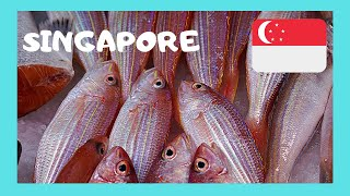 Download SINGAPORE, the graphic CHINESE FISH MARKET Video