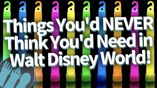 Download 19 Things You NEVER Thought You'd Need in Disney World...But You DO! Video