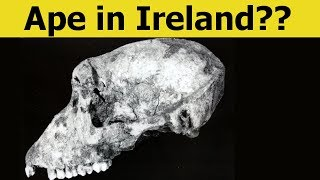 Download 9 CRAZY Discoveries That Might Change History! Video