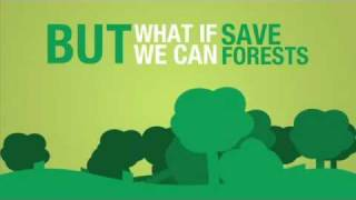 Download How to Save Trees and Forests? Video