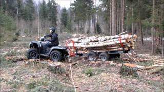 Download ATV TIMBER TRAILER Video
