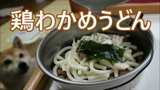Download 柴犬小春 「美味しい?」と聞くとうなずいたwおうどん作ったるよって、待っといて!【ASMR】 Video