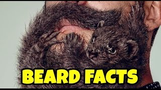 Download 15 Beard Facts that will make you appreciate your beard (a.k.a. Real Man Facts) Video