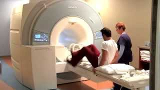 Download MRI of Knee Video