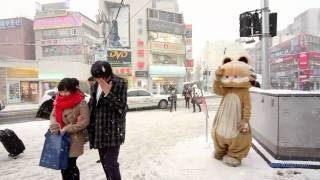Download Snow in Seoul Video