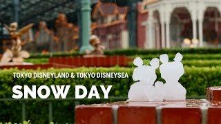 Download Snow Day 2016 at Tokyo Disneyland & Tokyo DisneySea Video
