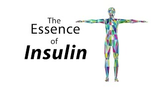 Download The Essence of Insulin Video