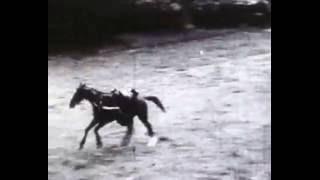 Download Cossacks-Казаки-Cosaques Video