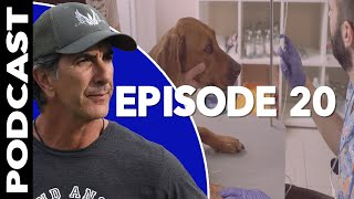 Download When to Put a Dog Down for Aggression - Reactive Dog Training Video Podcast Video