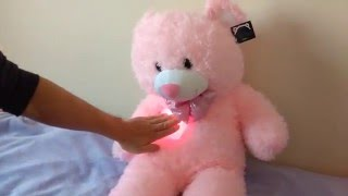 Download Light Up Teddy with Music Video