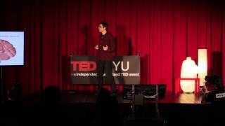 Download The neurobiology of happiness: Pascal Wallisch at TEDxNYU Video