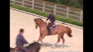 Download ShowJumperClinic Presents Rodrigo Pessoa Day 2 Riding & Lecturing Road Runner sample 1978 Video