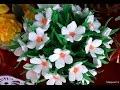 Download Forget me not paper flower tutorial - Hoa lưu ly bằng giấy nhún Video