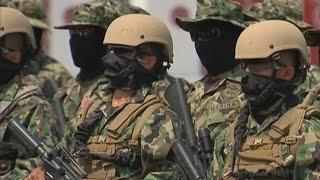Download ¿Quiénes son las Fuerzas Especiales de la Marina? Video