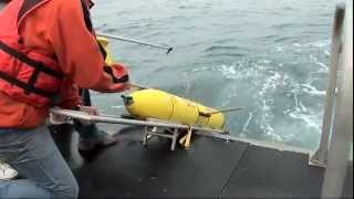 Download Dead Zones in the Ocean - Science Nation Video