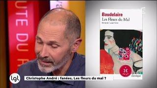 Download Pourquoi Christophe André n'aime pas du tout Les Fleurs du Mal Video