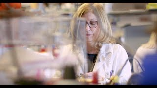 Download Celebrating Women's Health Research Video