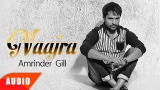 Download Naajra ( Full Audio Song ) | Amrinder Gill | Punjabi Audio Song Collection | Speed Records Video