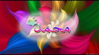 Download Axmed Nabi Muxamed Nabi Amaan iyo AUN Shiiraan Shiddaad Muraad Video