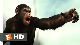 Download Rise of the Planet of the Apes (2011) - Battle for the Bridge Scene (4/5) | Movieclips Video