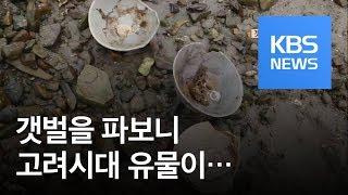 Download [뉴스 따라잡기] 갯벌에 파묻힌 고려청자…어부가 도굴꾼 Video