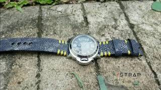 Download Stingray Custom Strap for Panerai Video