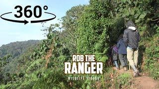 Download Join A Virtual Gorilla Trek In Uganda! (In 360° VR) Video