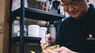 Download Food model craftsman/Interview - IS JAPAN COOL? CRAFTSMANSHIP(食品サンプル職人) Video