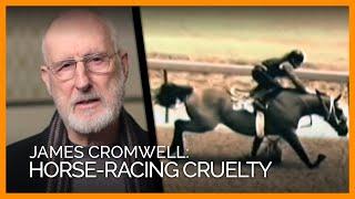 Download Demolition Derby: PETA's Investigations Expose Horse-Racing Cruelty Video