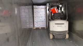 Download Loading lemons into a 40 refrigerator container Video