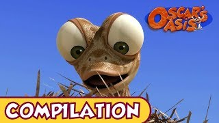 Download Oscar's Oasis - APRIL COMPILATION [ 25 MINUTES ] Video