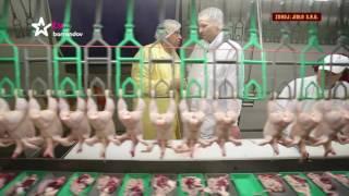 Download Takhle se tu školíme: o vodňanském kuřeti (celá reportáž) Video