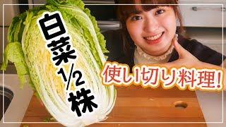 Download 【白菜を大量消費】1/2株使い切りで美味しい料理に!【簡単レシピで4品】 Video