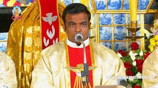 Download 17 Jan 2020 @ 06:00 am Tamil Mass Video