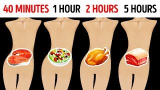 Download How Long Foods Stay In Your Stomach Video