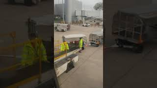 Download It looks a baggage handler is not in good mood today at Manchester airport Video