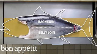 Download How To Butcher a Whole Tuna: Every Cut of Fish Explained | Handcrafted | Bon Appétit Video