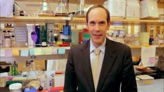 Download American Cancer Society Legends: Dr. Brian Druker Video