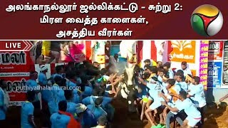 Download அலங்காநல்லூர் ஜல்லிக்கட்டு - சுற்று 2: மிரள வைத்த காளைகள், அசத்திய வீரர்கள் | AlanganallurJallikattu Video