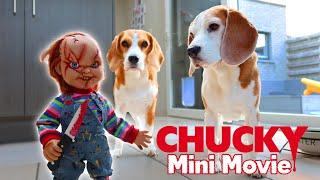 Download Little Evil Chucky vs Funny Beagles PRANK : Mini Movie Video