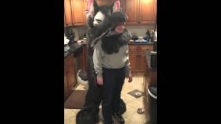 Download Furry hug Video