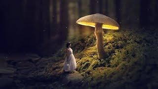 Download Glowing Mushroom - Photoshop Fantasy Manipulation Tutorial Video
