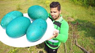 Download 100 $ GREEN EGG    EXPENSIVE BIG GREEN EGG COOKING    EMU FOOD    Video