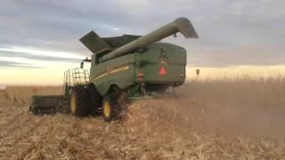 Download Sights & Sounds of Corn Harvest Video