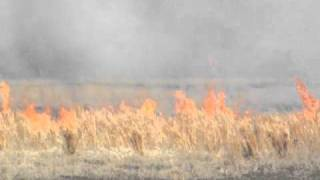 Download Wildfire In Wagoner, Oklahoma - Sunday, March 6, 2011 Video