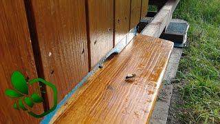 Download Pasieka Początkującego Pszczelarza - #03 Transport pszczół i uli Video