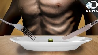 Download What Does Starvation Do To The Body? Video