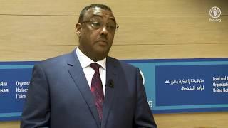 Download Remarks by Demeke Mekonnen, Deputy Prime Minister of Ethiopia Video